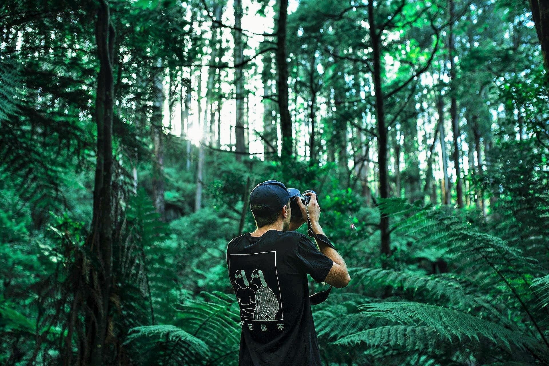 Η φύση καλεί SOS: Τα 2/3 των τροπικών δασών έχουν καταστραφεί