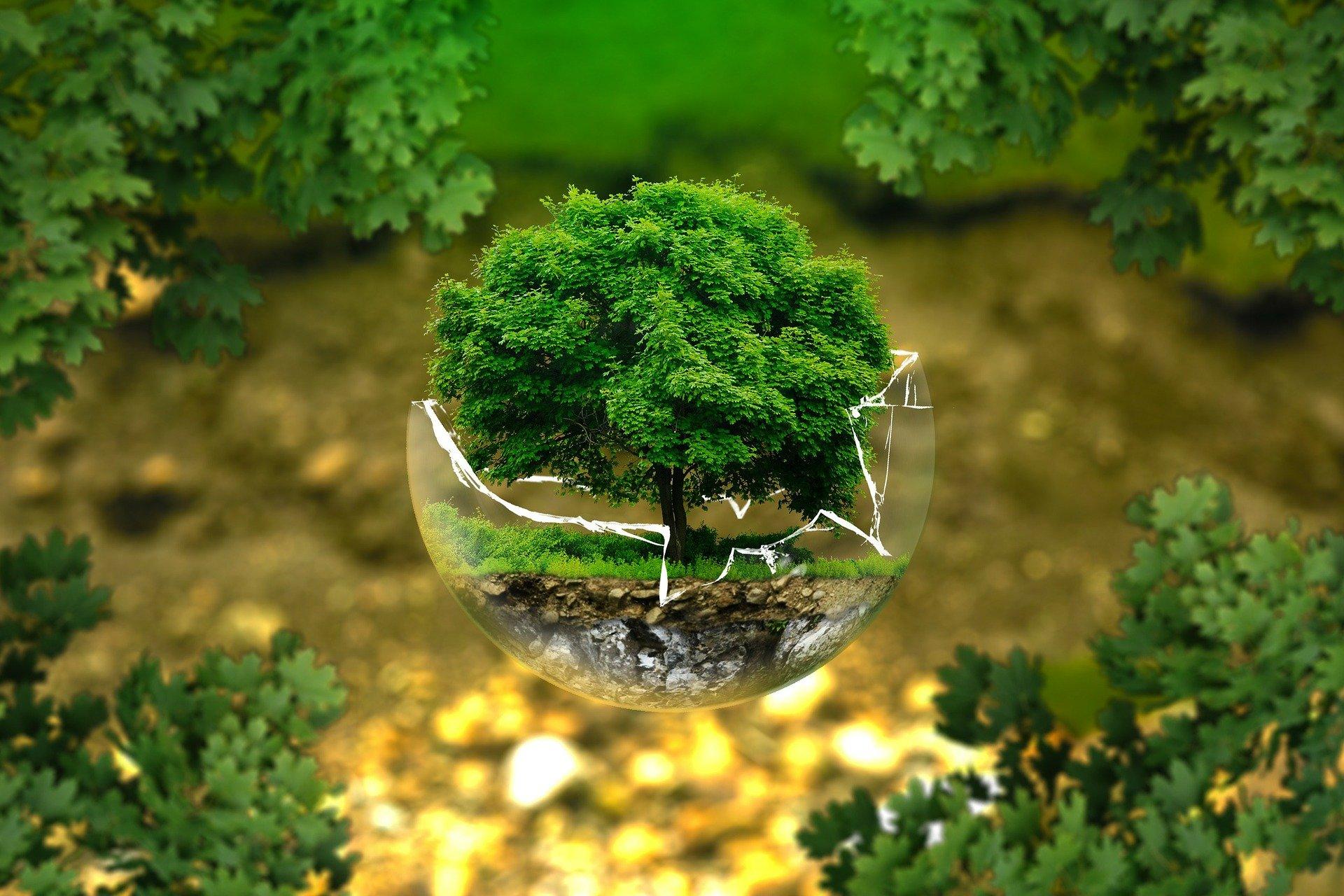 Παγκόσμια Ημέρα της Γης:  Χρέος μας να διαφυλάξουμε, να σώσουμε τη Γη – Πατρίδα