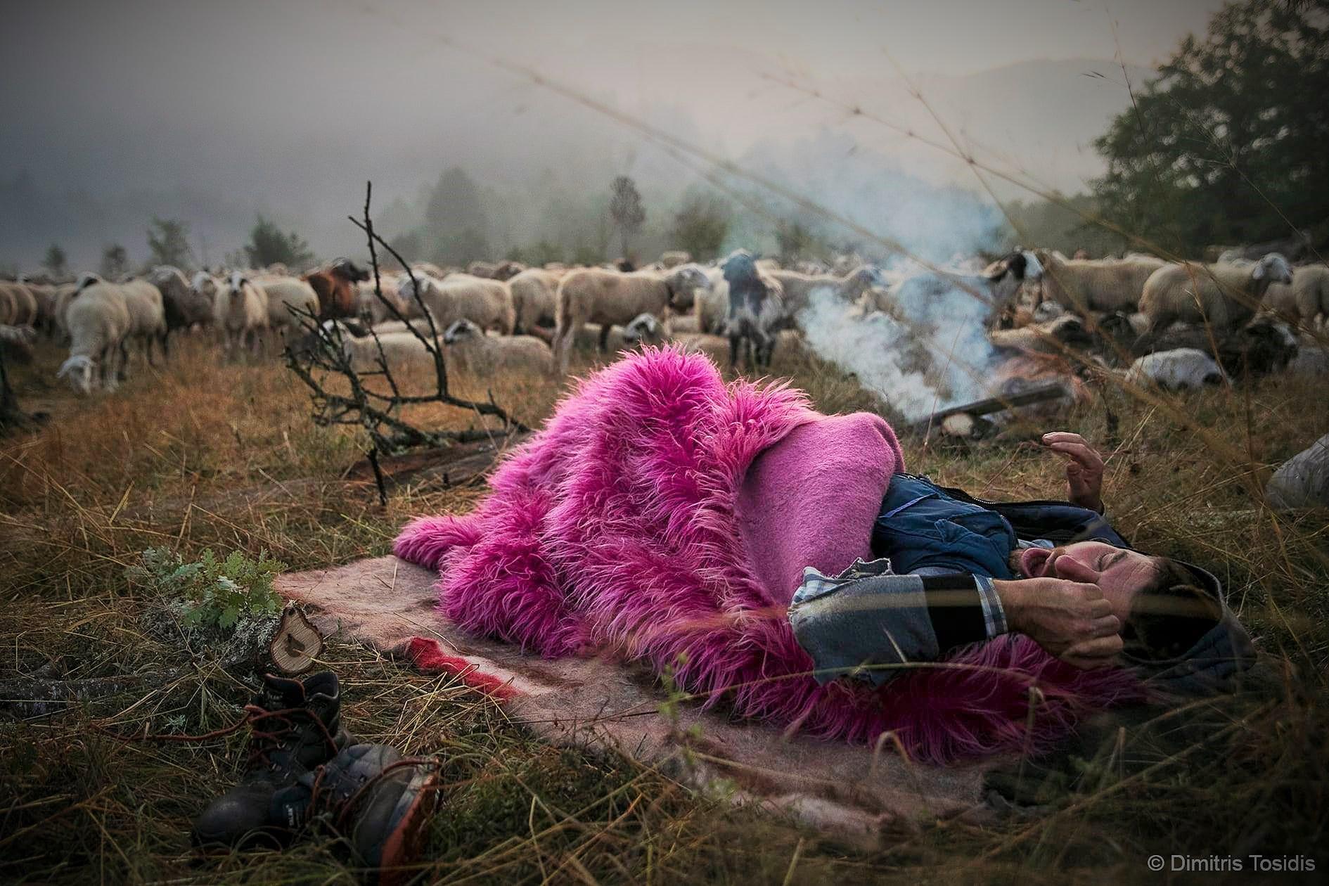 «Διάβα»: Η ορεινή Ελλάδα μέσα από τον φακό του βραβευμένου φωτορεπόρτερ Δημήτρη Τοσίδη