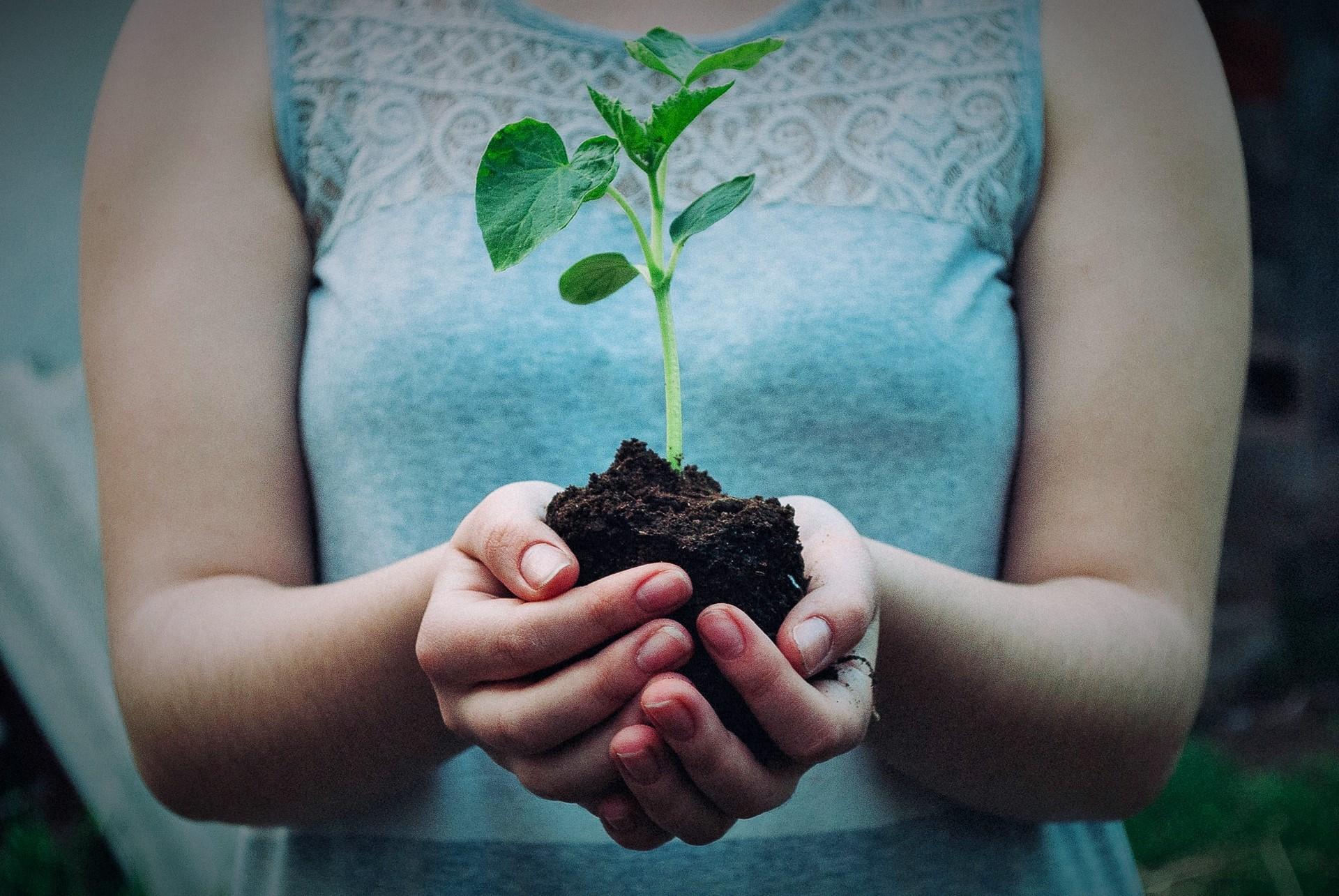 Παγκόσμια Ημέρα Περιβάλλοντος 2021: Επανασχεδιασμός, Αναδημιουργία, Αποκατάσταση